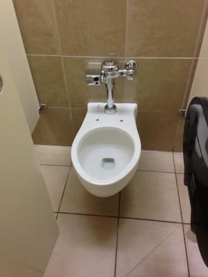 Broken_toilet